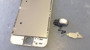 iPhone5Sホームボタン修理方法